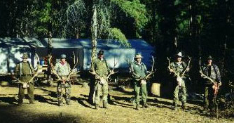 guiding elk hunters